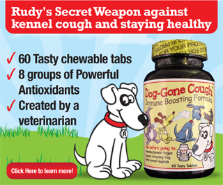 The Kennel Cough Cure